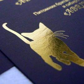 Печать визиток с фольгированием на дизайнерской бумаге