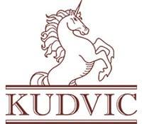 Логотип KUDVIC